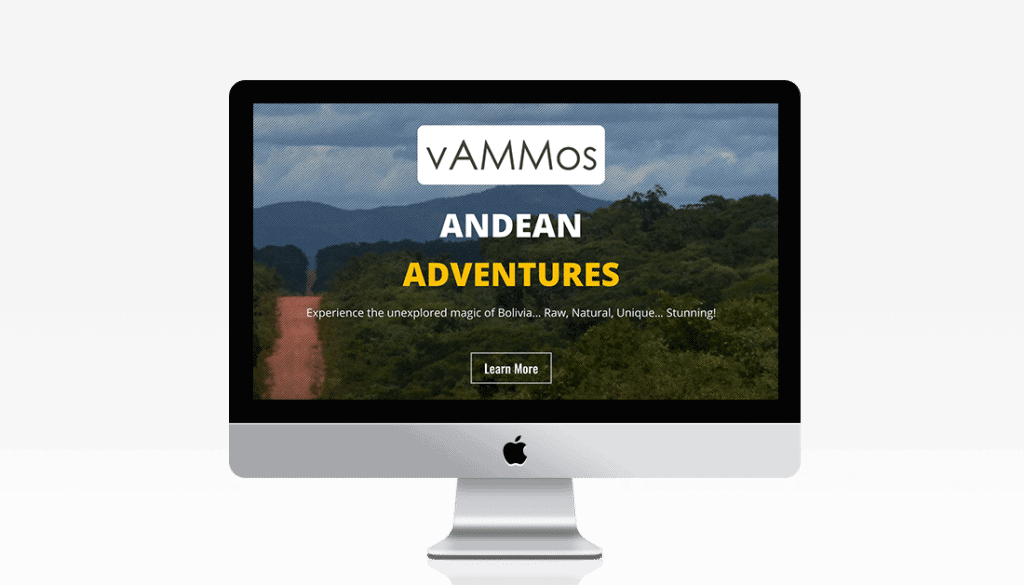 vAMMos website